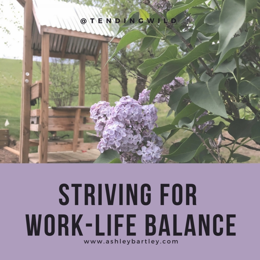 Striving for Work-life Balance