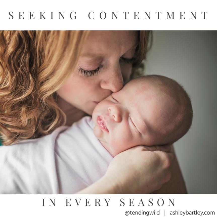 Seeking contentment