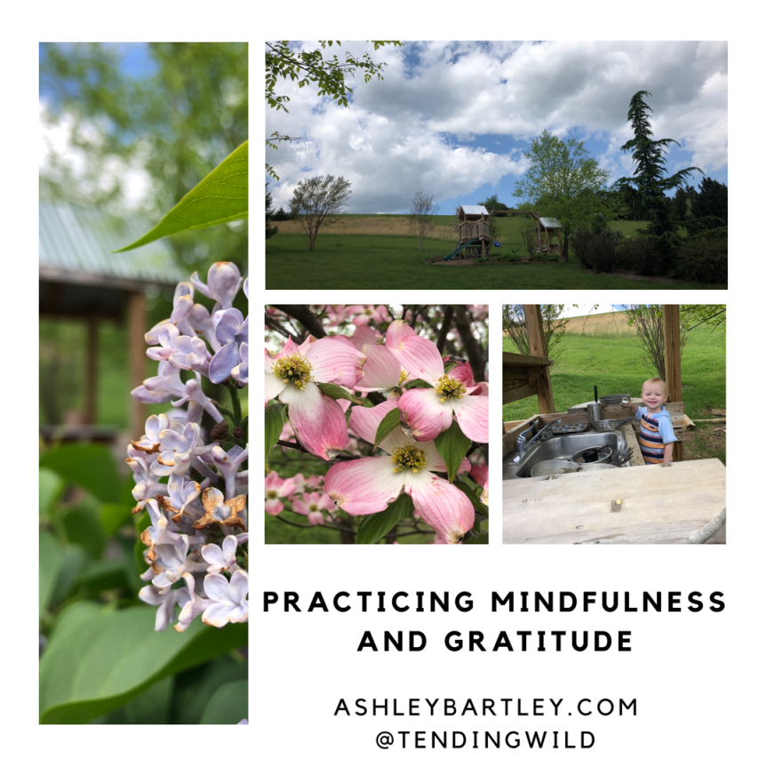 Practicing mindfulness and gratitude